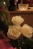 цветы картинки розы