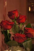 картинки цветов розы