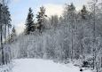 зима,природа зимой фото