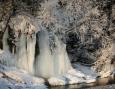 природа зимой фото